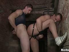 Gay Man Videos #15010